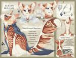 Gilded Princeling | Custom Com