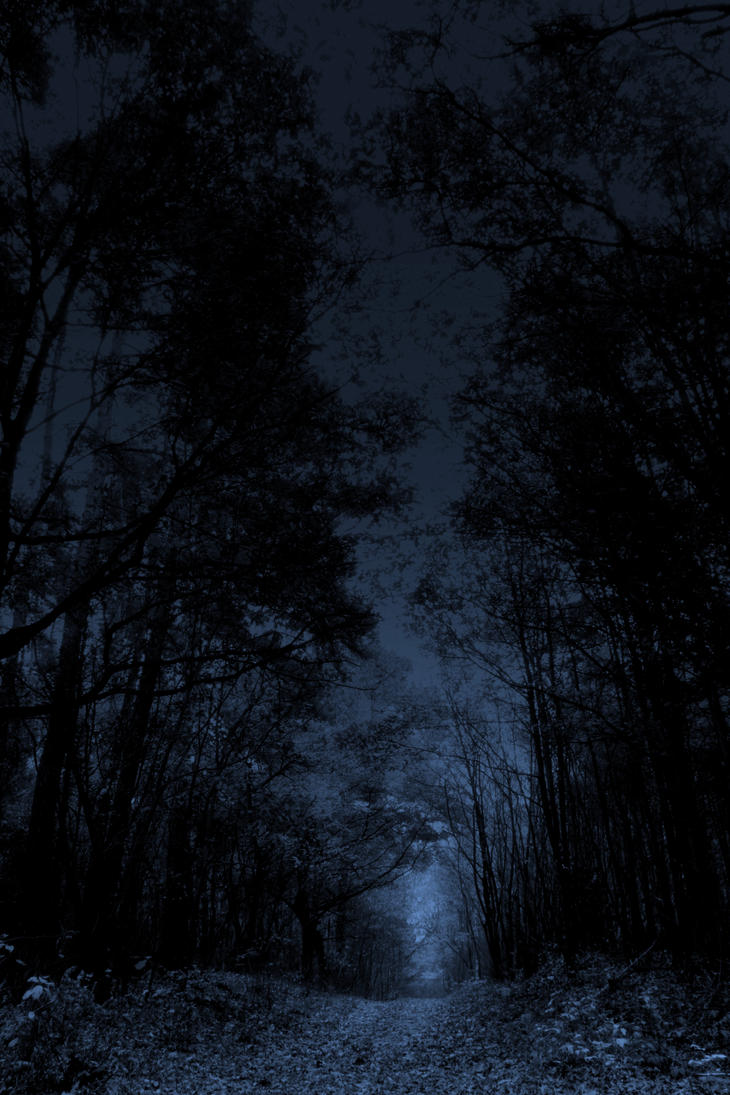 http://pre00.deviantart.net/76d1/th/pre/i/2010/340/8/1/in_the_woods_by_charlottethederanged-d34d4q0.jpg