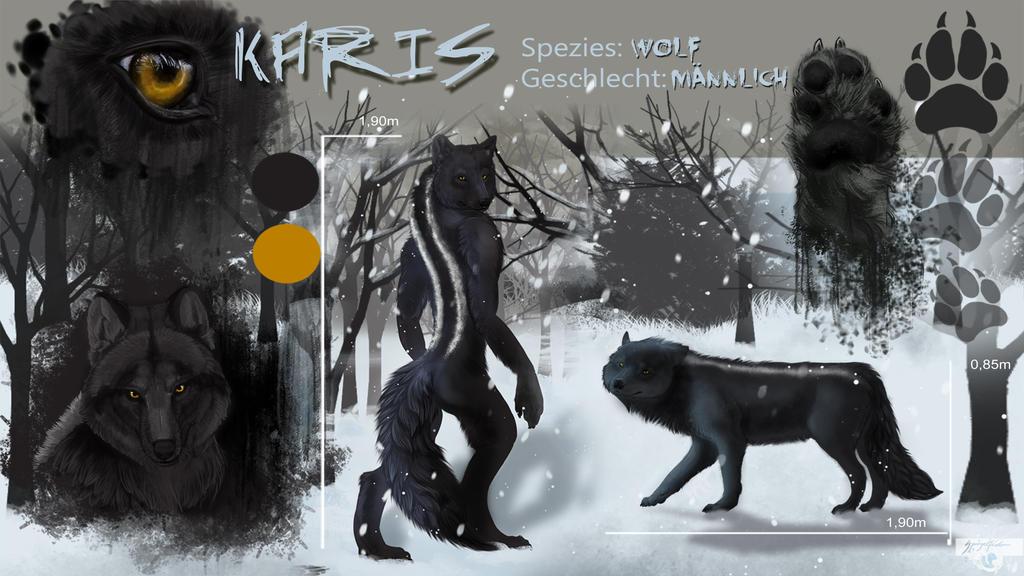 Charsheet Karis [Commission] by Jerhaia-Tsukikitsune