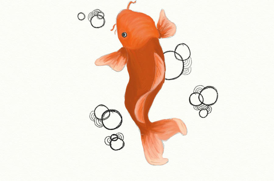 koi fish by TangerineSea on deviantART