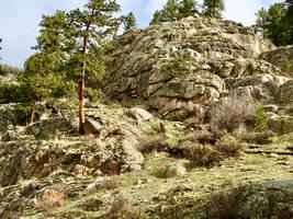 Bighorn Hill