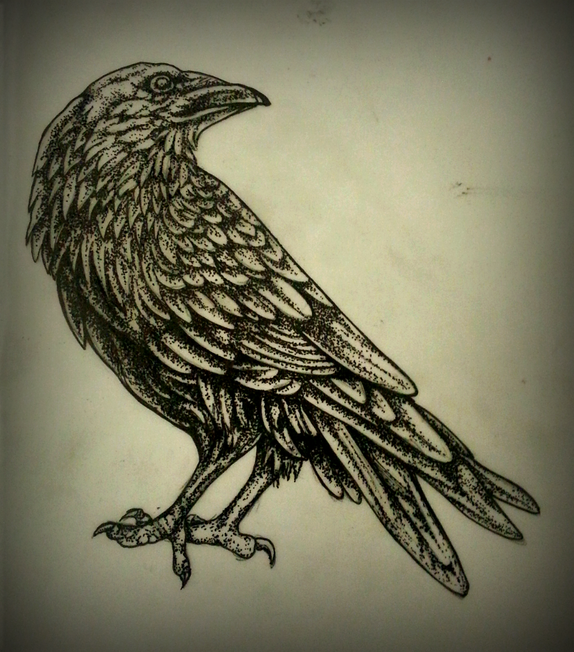 blackbirds drawing - photo #14
