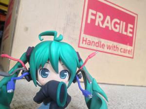 Fragile Miku