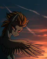 If I could fly by DragonAtaxia