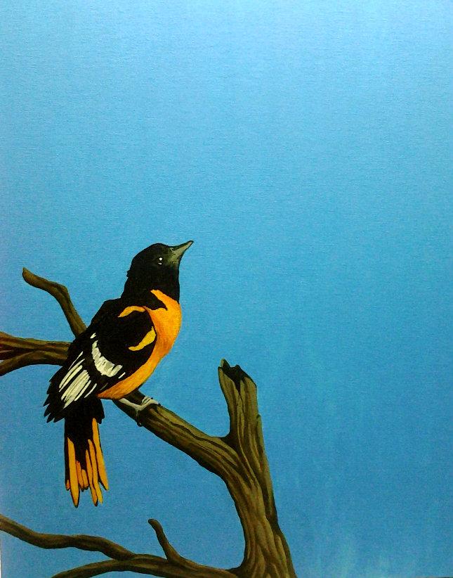 Keep Looking Up by FallBird