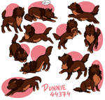 Dunnie HP Sheet