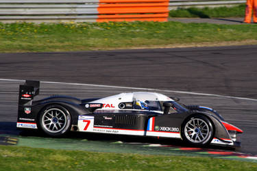 1000 Km Monza Peugeot by luis75