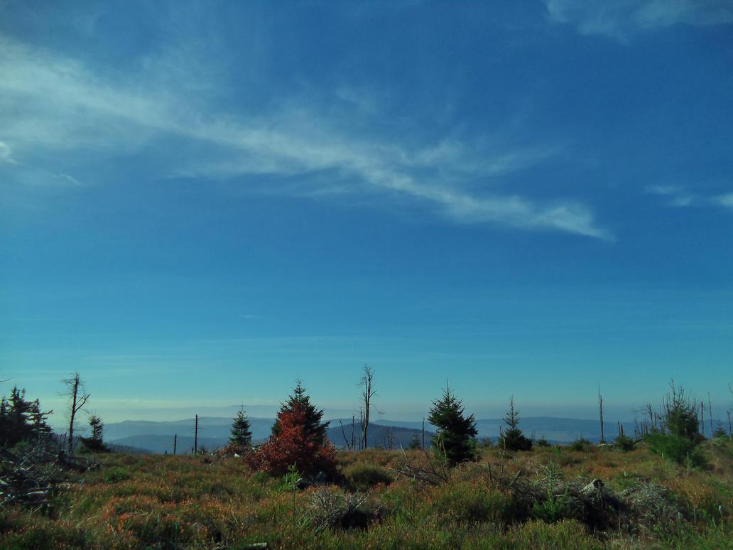 Owl Mountains 39 by gorewacha