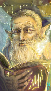 Wise Old Wizard