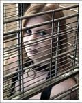 Caged - version 1