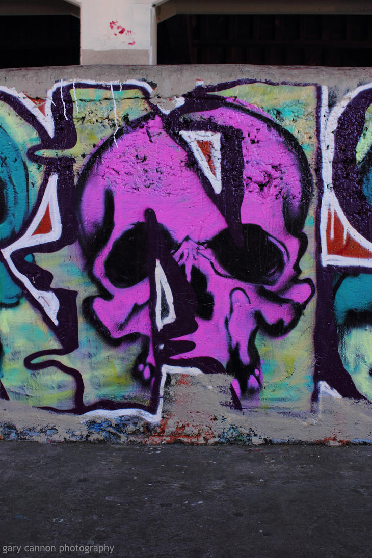 Burnside Skull by worldtravel04