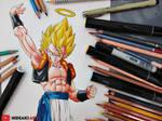 SSJ Gogeta    Dragon Ball Z: Fusion Reborn