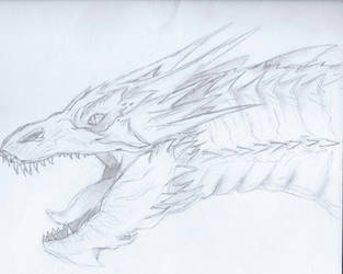 Smaug by Caledwiwer