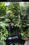 Fairchild Botanical Gardens Stock 20