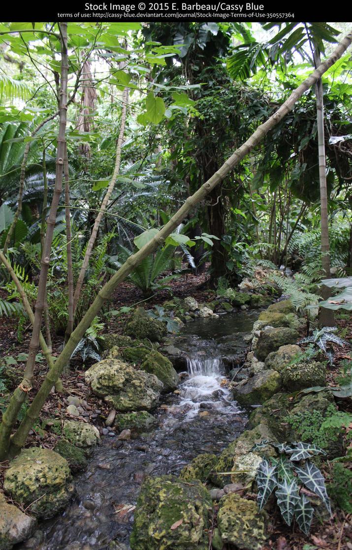 Fairchild Botanical Gardens Stock 9 By Cassy Blue On
