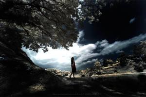 lost in fairy land by noenoe