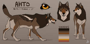 Reference Sheet: Ahto