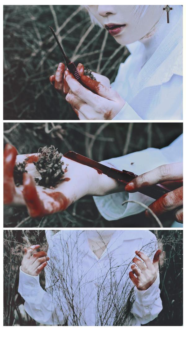 Dead Rose 2 by HaKaryo