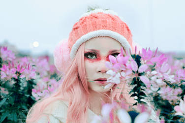 The flower by HaKaryo