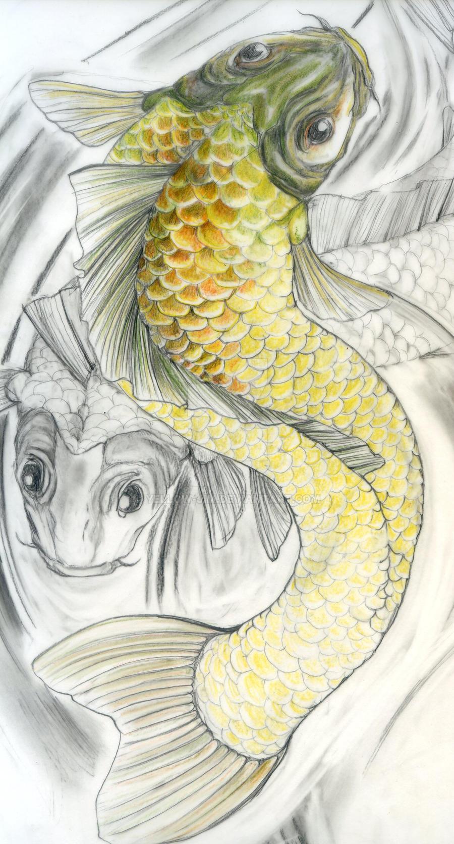 Koi carp by yellow jim on deviantart for Koi zot i mange zordi