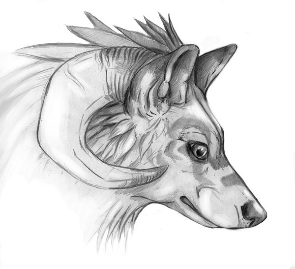 anime wolf sketches  Google Search  drawings  Pinterest