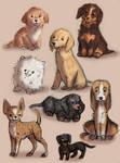 dogys