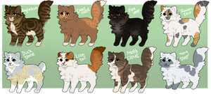 Fluffy cat adopts 3 - OPEN - 2/8