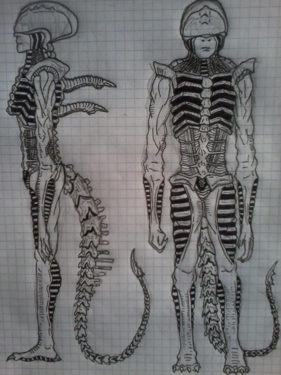 The Predator Hybrids Genetically Modified with Human amp Xenomorph DNA Explained