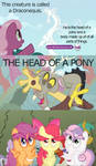 That's One Ugly Pony...