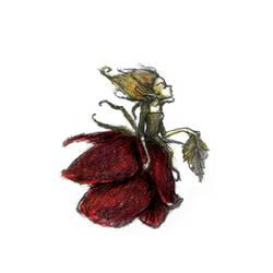 Dried Rose Dress by liselotte-eriksson
