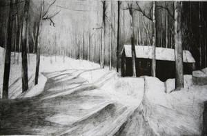 snow house by pierzyna