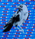 Crow by pierzyna