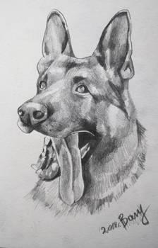 Bary drawing