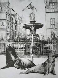 Seals in Gdansk