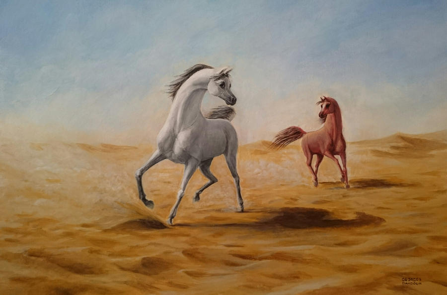 Arabian horses by georges-dahdouh