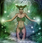 The Forest Maker