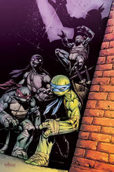 TMNT#33_cover by Santolouco