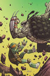 TMNT#35_cover