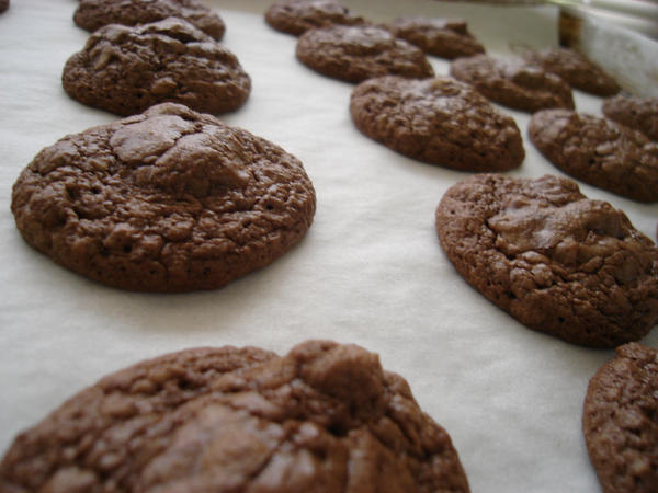 Brownie Cookies by ztodden