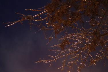 Frozen by wordsofshadow