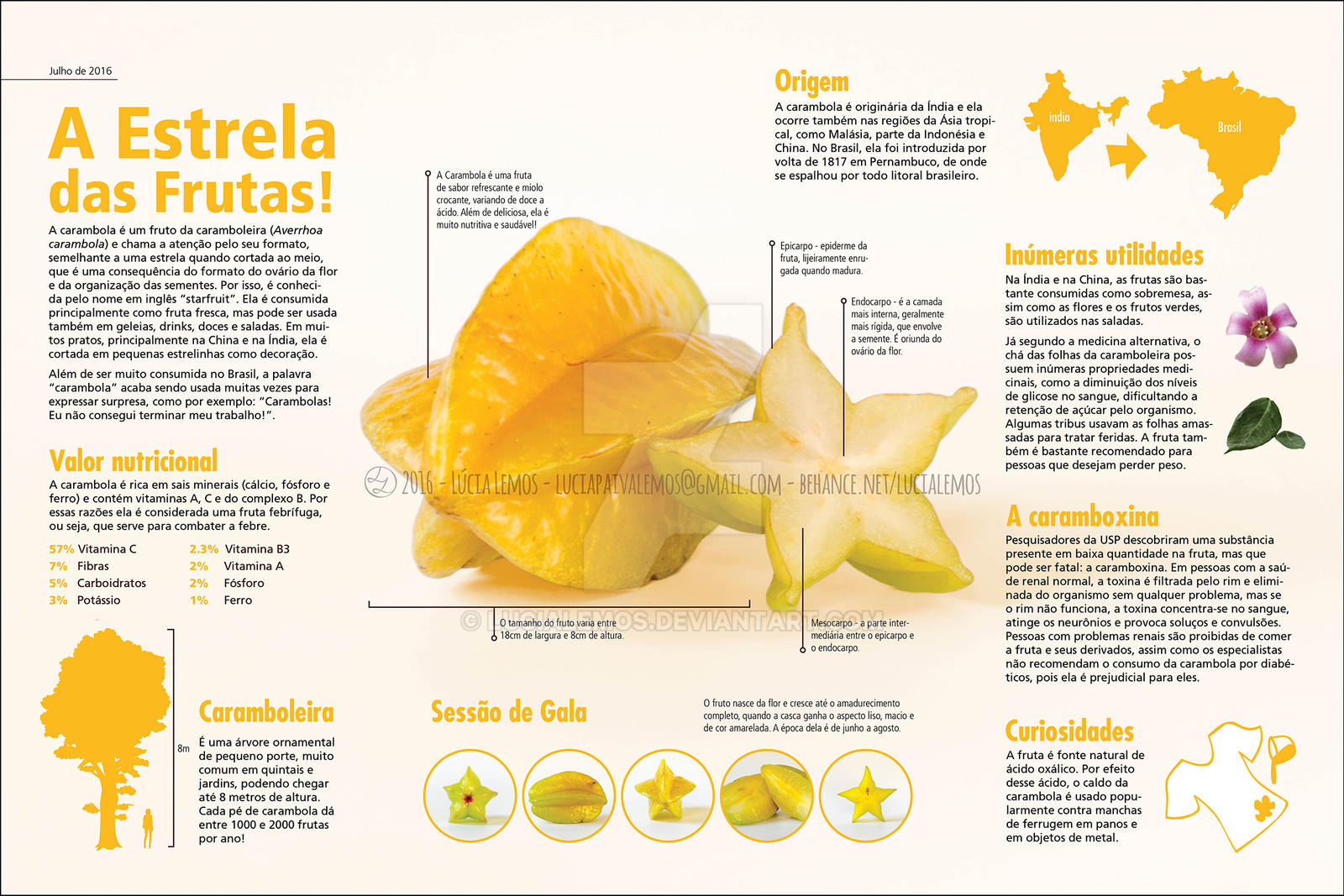 A Fruta Carambola Serve Para Que carambola -starfruit- infographiclucialemos on deviantart