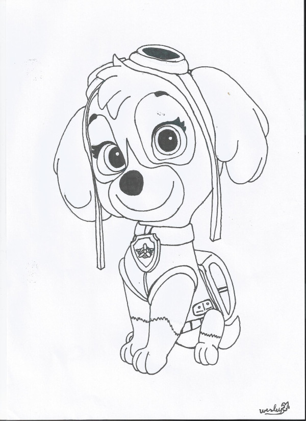 sky paw patrol coloring pages - photo#25