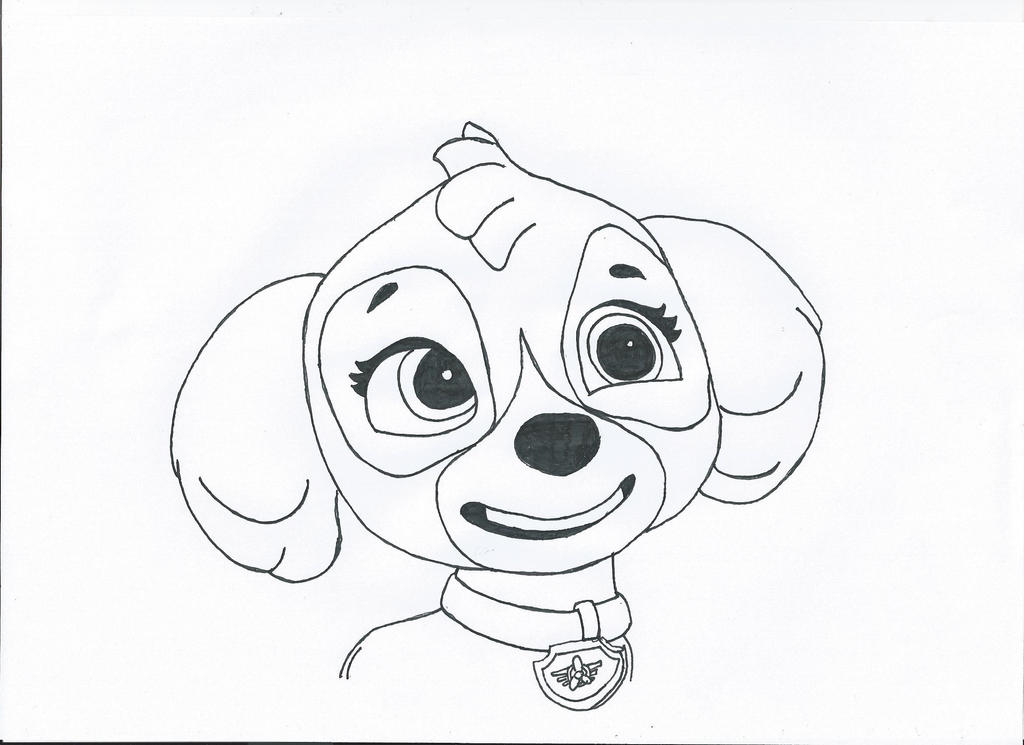 This is a picture of Bright Skye Paw Patrol Drawing