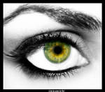Picture in an Eye Tutorial