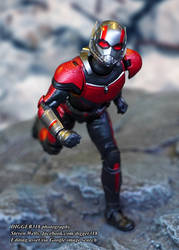 S. H. Figuarts Ant man Avengers Review 4K by Digger318