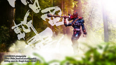 S H Figuarts Kamen Rider Zanki Shinkocchou Seihou