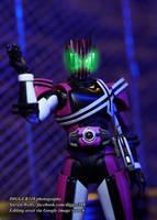 S. H. Figuarts Kamen Rider Neo Decade