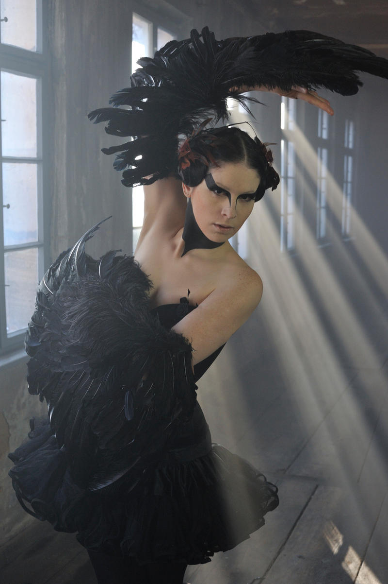 Black Swan by yale-stock