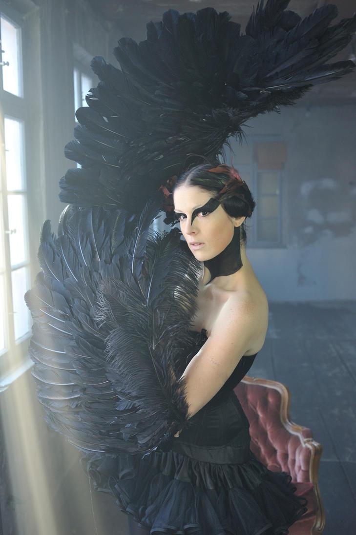 Black Swan II by yale-stock