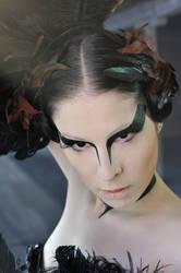 Black Swan V by yale-stock